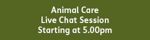 Animal Care 5.00pm