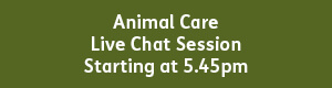 Animal Care 5.45pm