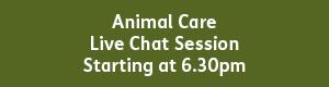 Animal Care 6.30pm